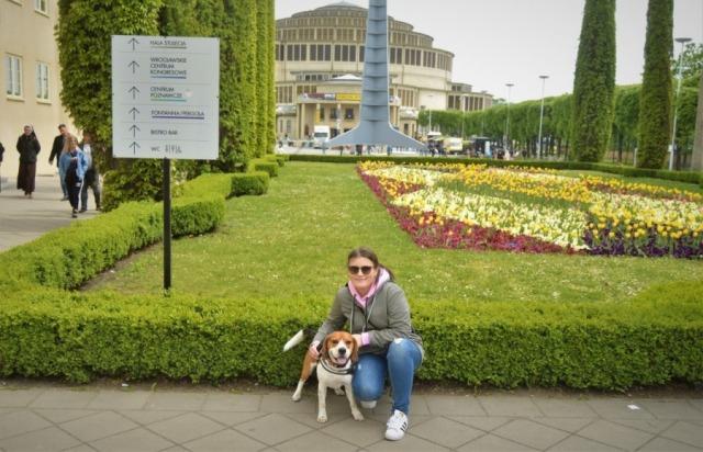 Wrocław z psem